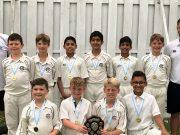 Continued Cricket Success