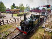 The Town Close School Reception children visit Bressingham Steam and Gardens