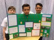 The Year 6 Science Fair