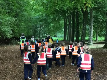 Year 1 venture out to Thetford Forest